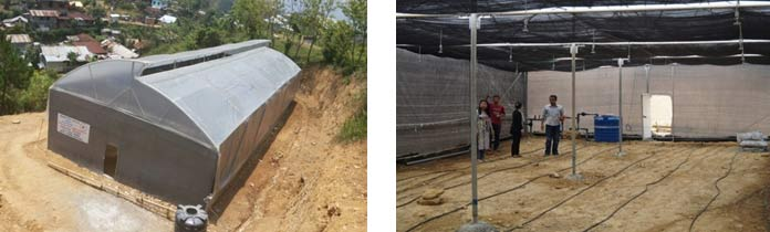 Greenhouse-for-horticulture-under-Vocational-project-of-RUSA,-Mt.-Tiyi-College,-Wokha